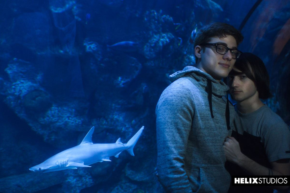 Aquarium - Cole Claire and Blake Mitchell